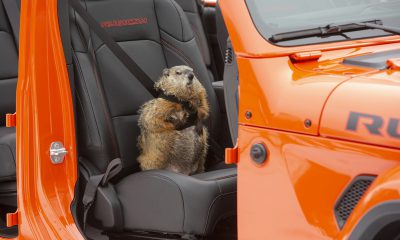 Jeep Gladiator Groundhog Day Super Bowl Commercial
